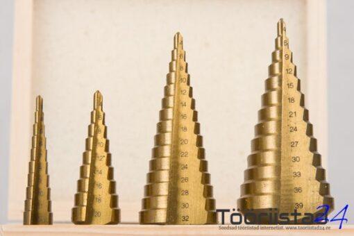 Koonuspuuride komplekt 4 osa 4-39mm